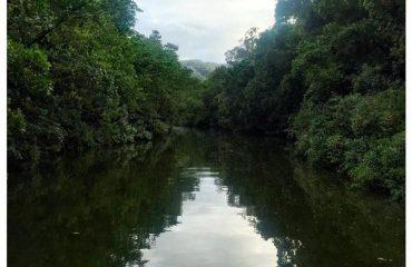 daintree-river-photo_17713821-674x446